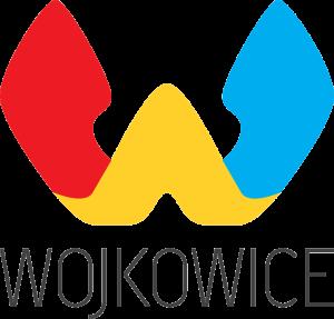 logwojkow1617
